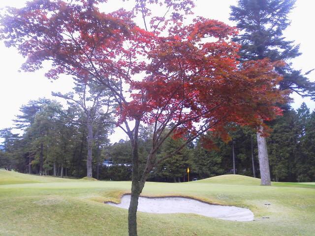 紅葉狩りゴルフ(AKI)